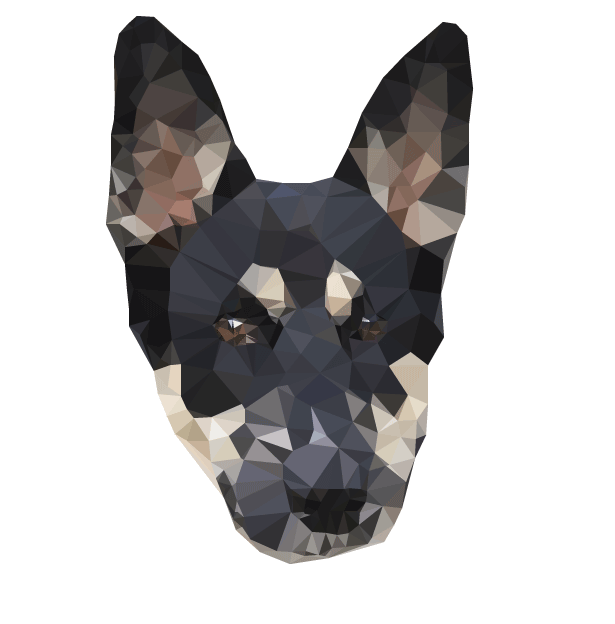 vector triangulator dog