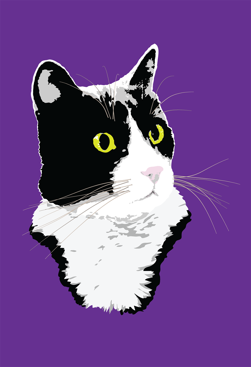 tuxedo cat illustration
