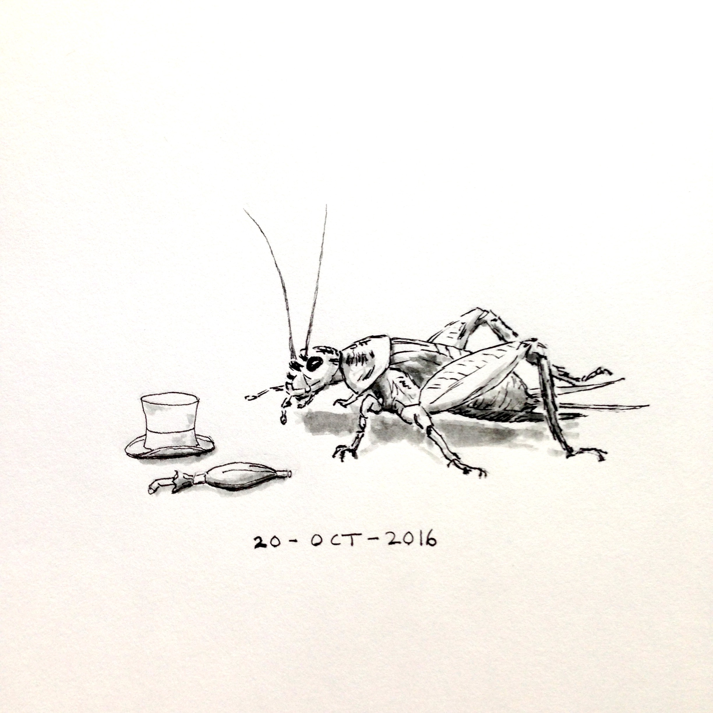Ink drawing of a cricket pondering a top hat and umbrella