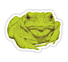 Toad design decorating a Redbubble sticker