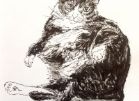 Drawing of a fluffy, fat cat