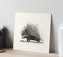 Porcupine Redbubble art board