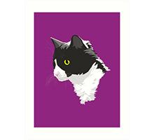 Redbubble tuxedo cat art print