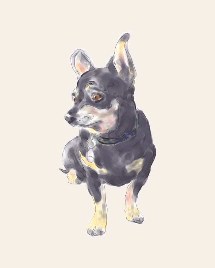 Little Dog Waiting digital watercolor painting
