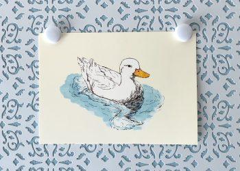 White Duck 5x7 art print
