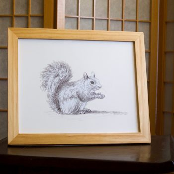 Squirrel at Rest 8x10 print at Etsy