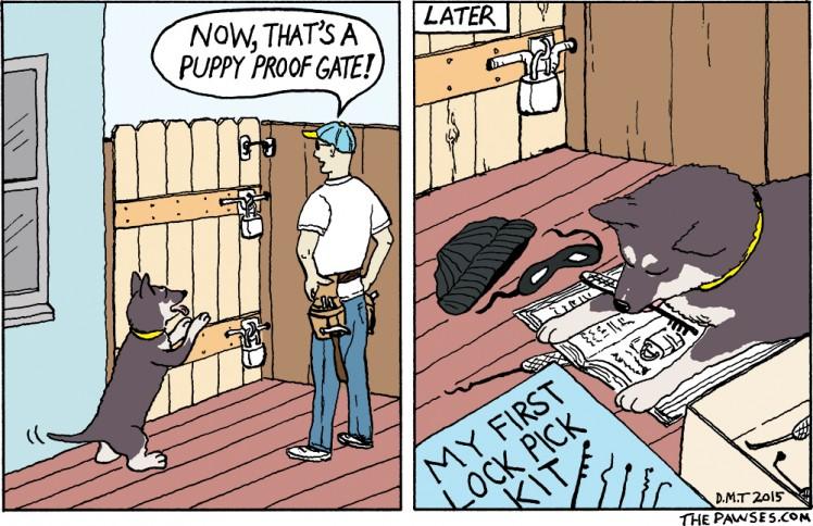 Dog with lock picks