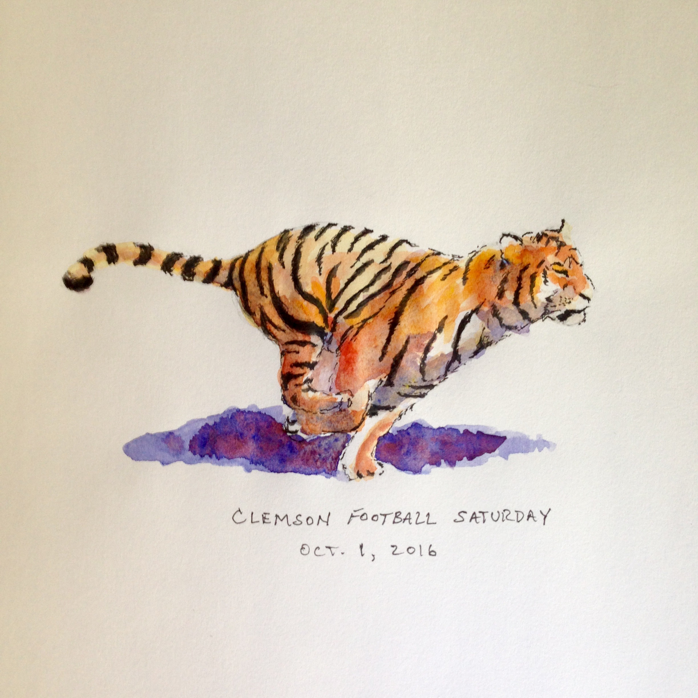 Pen and watercolor drawing of Clemson tiger