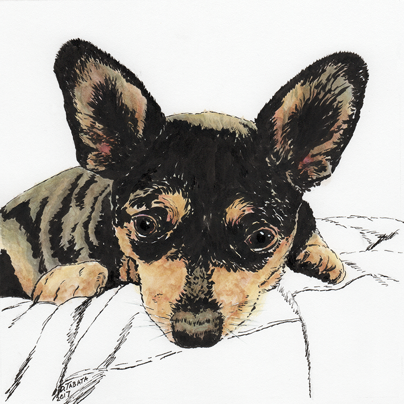 Ink and watercolor drawing of Mouse the dog