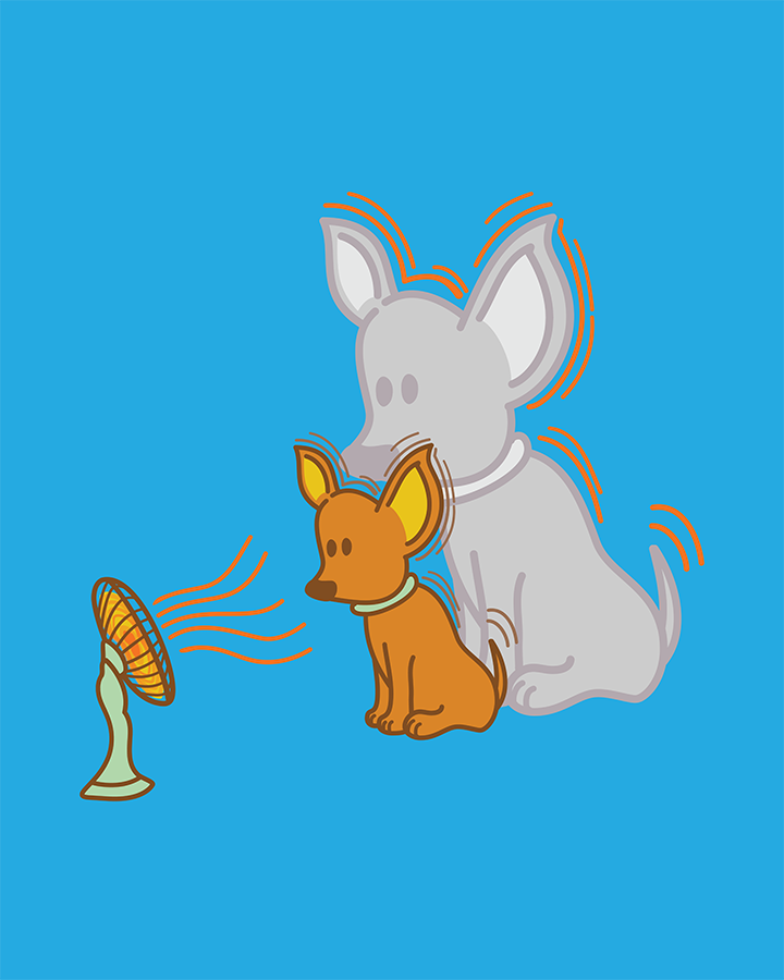 Digital drawing of a small dog looking at a fan