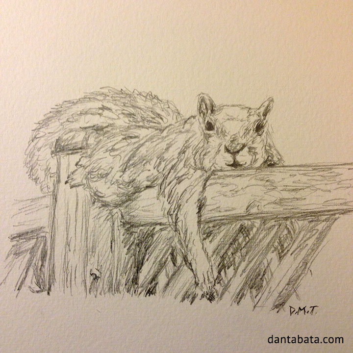 Pencil drawing of a squirrel relaxing on a fence