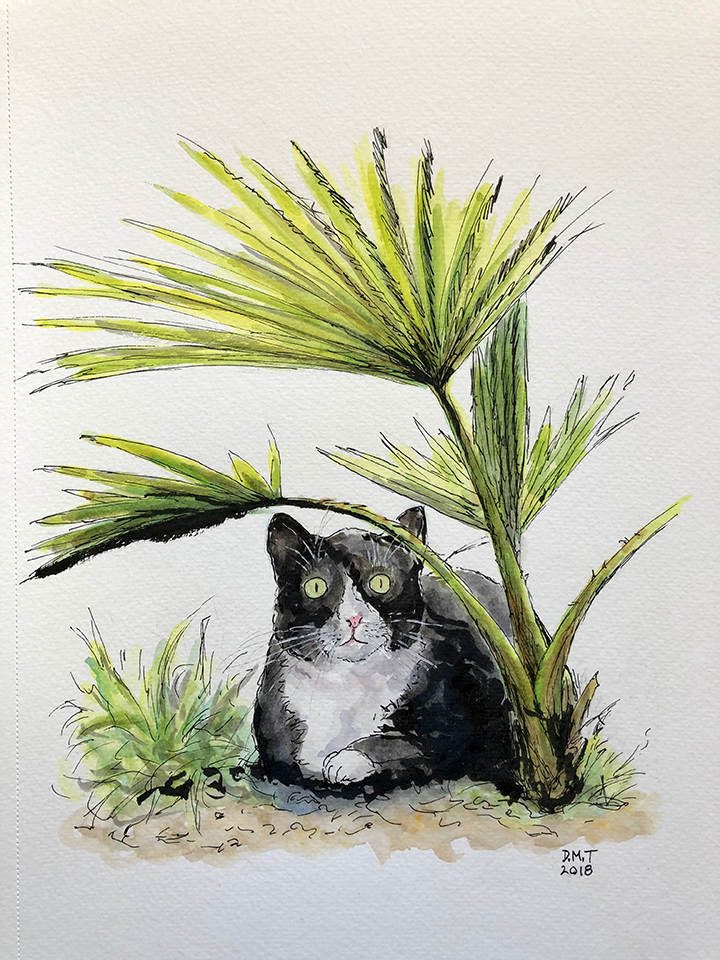 Pen and watercolor drawing of a cat and his palm tree