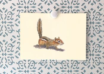 Curious Chipmunk 5x7 art print
