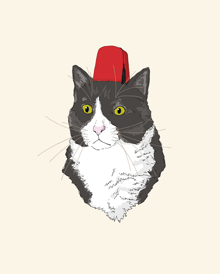 Fez hat cat drawing