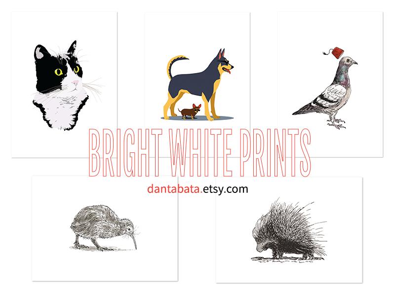Bright white prints in Dan's Etsy shop