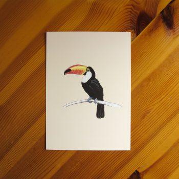 Toucan 5x7 art print