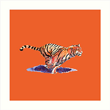 Redbubble art print of the tiger - orange