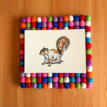 Ready, Set, Squirrel! 5x7 print
