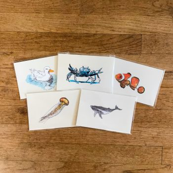 Water Animal Postcards