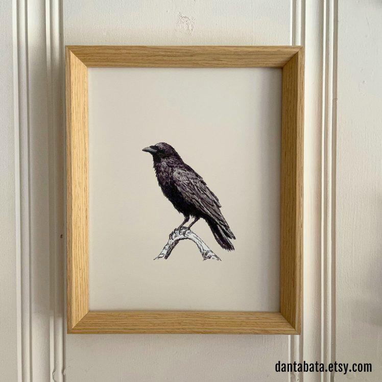 Raven M 8x10 print